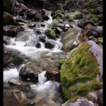 A river rushes through rocks