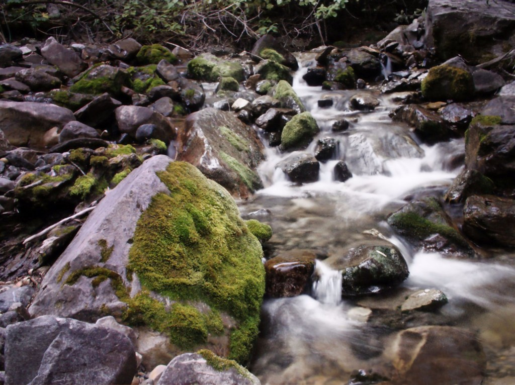 little stream flowing through rock canyon